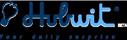 logo_hubwit