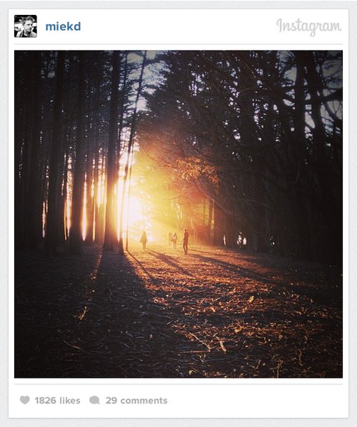 Instagram-Embed-Content