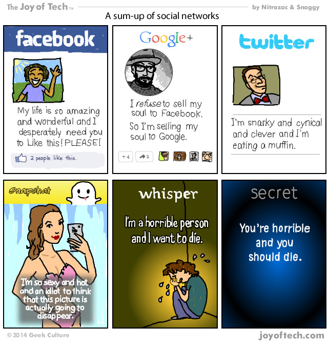 A Sum-up Of Social Networks (Comic)