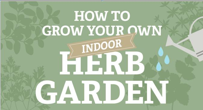 how-to-grow-your-own-indoor-herb-garden-main
