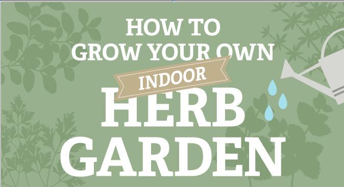 how-to-grow-your-own-indoor-herb-garden-main