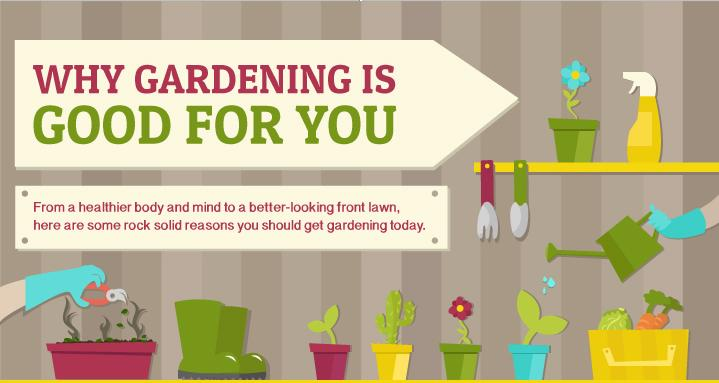 Why-gardening-is-good-for-you-main