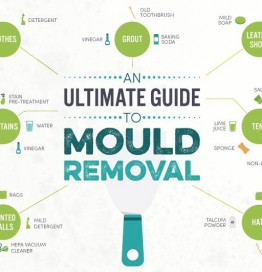 An-ultimate-guide-to-mould-removal-main