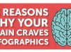 the-reasons-why-your-brain-craves-infographics-main