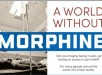 Aworldwithoutmorphine-main