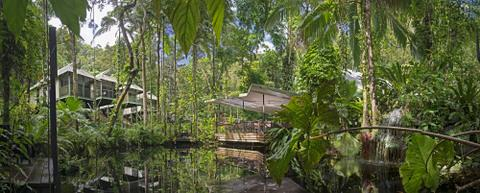 daintree-eco-lodge